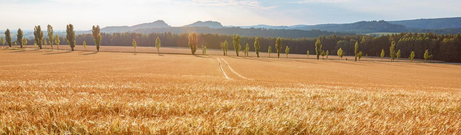 Хто може скористатися правом постійного користування землею?, фото [1]